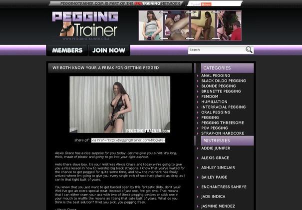 pegging trainer peggingtrainer.com