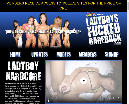 www ladyboy ladyboy com members mhome